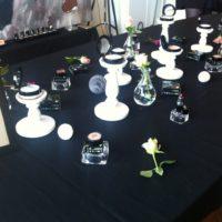 Makeup Event med Organics by Sara & Zuii Organic Sverige